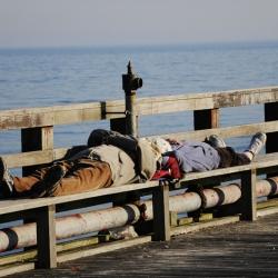 http://sarasponga.com/files/gimgs/th-52_52_sleeping-beauty.jpg